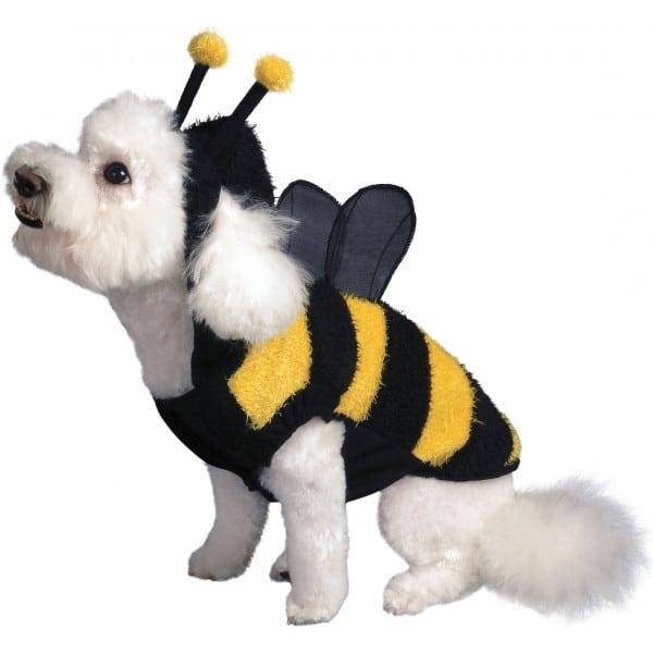 costume-d-abeille-pour-chien
