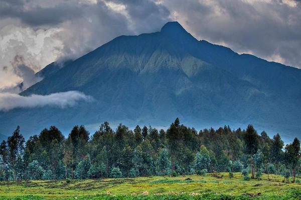 Volcanoes National Park, Virunga Mountains, Rwanda